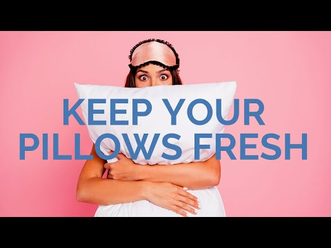 Best Steps How to Clean Pillows and Keep Them Smelling Fresh