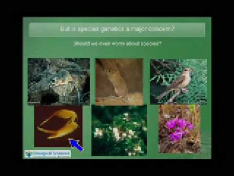 Nature Matters: Conservation and the Futures of Life