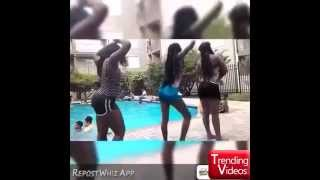 Hit That Dolphin Vine Compilation | Hit That Dolphin Dance Vine Compilation #dadolphin