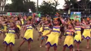 field demo cdbs 20th foundation day grade 1 level