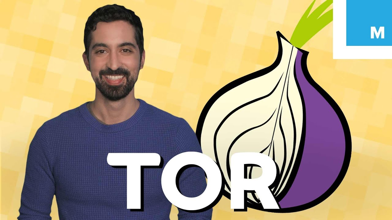 What is Tor and Should You Use It? | Mashable Explains