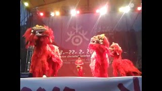 Cinsky tanec lva / Chinese lion dance in Prague