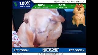 Funny dogs & NUTRIVET zdrava hrana za pse i mačke (5)