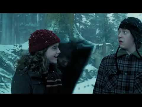 Download #harrypotter #harrypotterfan  Harry Potter  The Christmas Scenes  Christmas in the Wizarding World