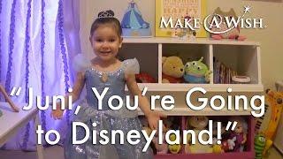 Wish Granted: Juni Goes to Disneyland