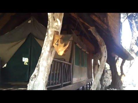 Verblijf Edo's Camp