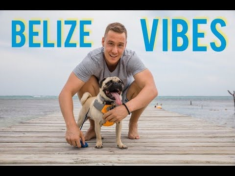 A REALLY GOOD day in Belize! Will Mitchell's VLOG