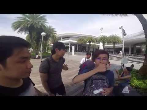 Adventure cove vlog