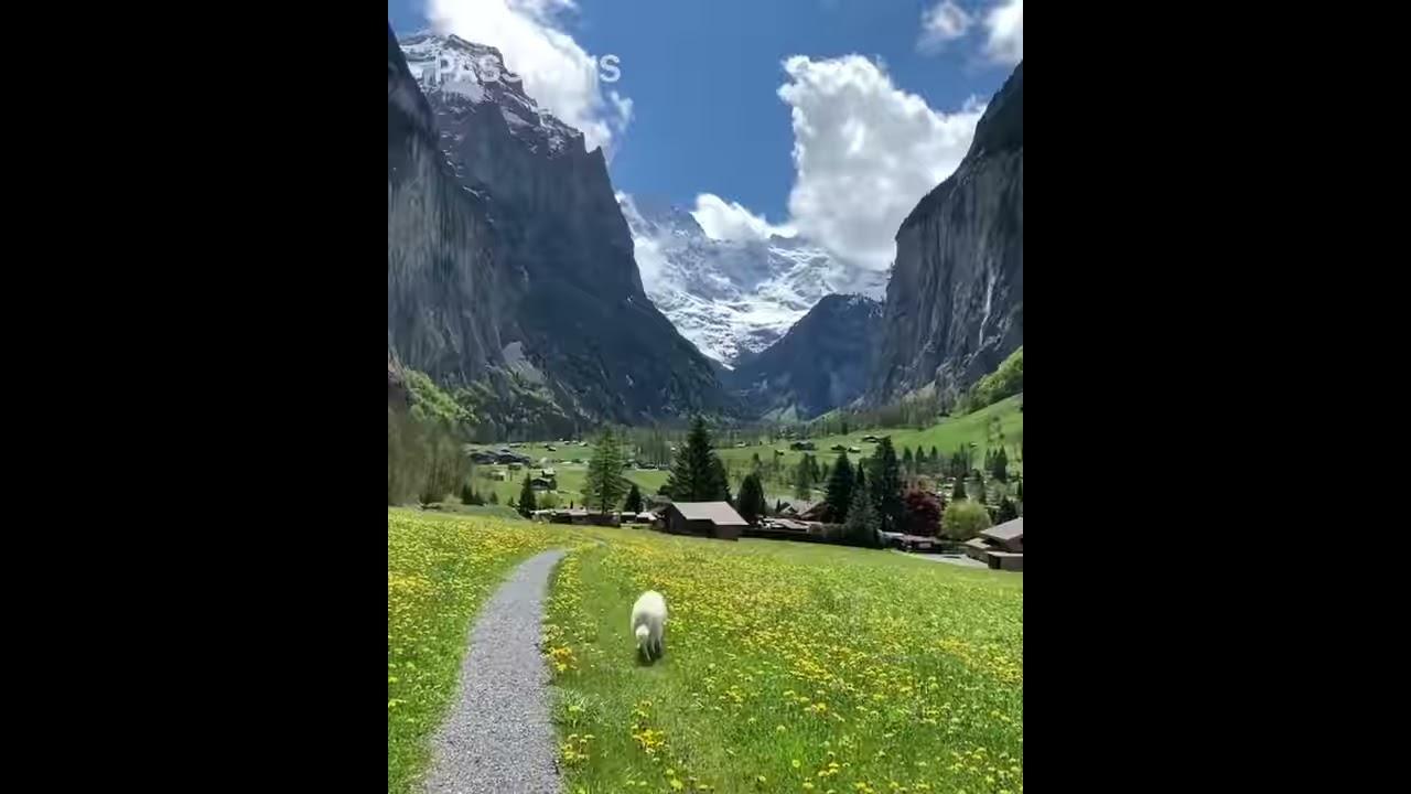 Phong cảnh đẹp như tranh vẽ ở dãy núi Alps Thụy Sĩ