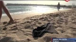 Египет. Акула-людоед.(В этот вторник египетские власти частично открыли пляжи Шарм-эш-Шейха для профессиональных дайверов. Но..., 2010-12-14T12:55:03.000Z)