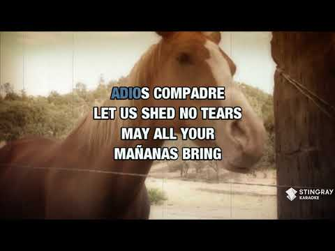 Adios Amigo In The Style Of Jim Reeves | Karaoke With Lyrics