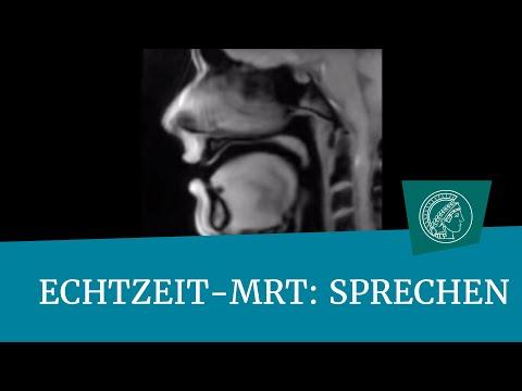 Echtzeit-MRT-Film: Sprechen