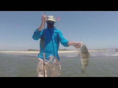 Catching Redfish and Black Drum in the Upper Laguna Madre
