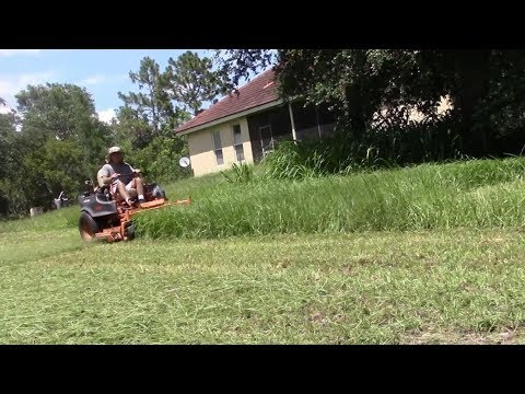 Lawn care vlog #46 Tall grass mowing - The Sequel - Feature length!
