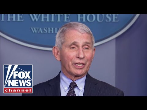 Fauci takes first opportunity to throw Trump under the bus, 'The Five' reacts