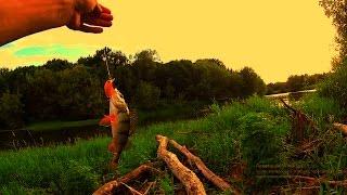 ловля на ультралайт, окунь, щучка(Всем привет. В этот раз я поехал по ловить на ультралайт спиннинг, клевал нормальный окунь и временами попад..., 2016-07-27T06:40:00.000Z)