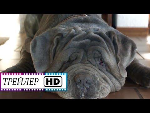 Моя собака Идиот - Русский трейлер (1080 HD) | Фильм | (2020)