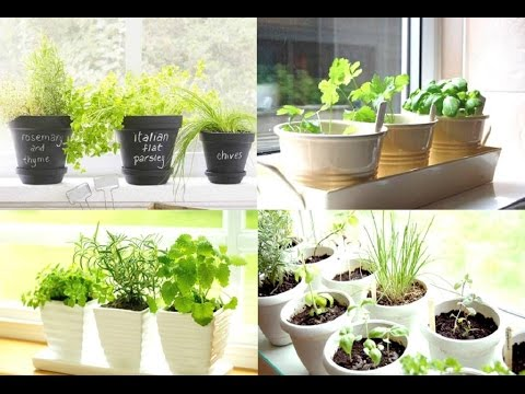 how to make a kitchen herb garden - youtube