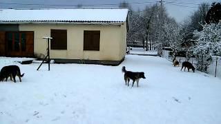 31 janvier 10h du matin à Saint Gervais d