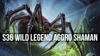 Aggro Shaman [Top 20 Wild Legend]
