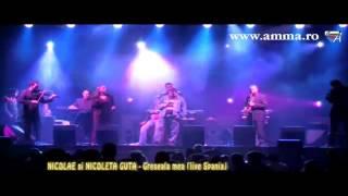 Download Mp3 Nicolae Si Nicoleta Guta - Greseala Mea  Live Spania