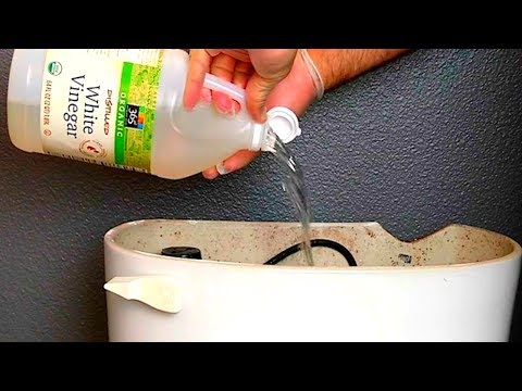 Put Vinegar Into a Toilet, and Watch What Happens