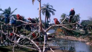 "Baby Boomers Tribute ""Busch Gardens & Bird Sanctuary"" Van Nuys San Fernando Valley So Cal"