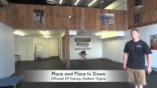 "2-week Board/train ""karli"" Before And After Video! Celebrity Dog Training, Northern Virginia"