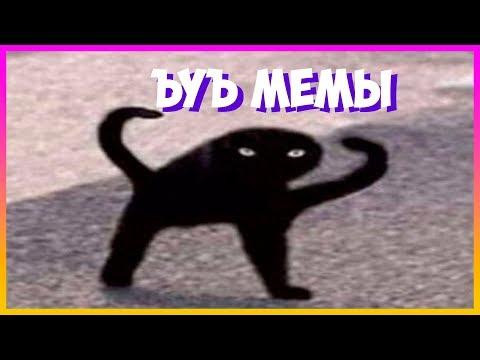 Лютые мемы с котами. ЕСЛИ БЫ МЫ СЛЫШАЛИ КОТОВ. смешные мемы