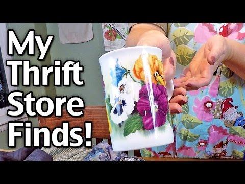 My Great Thrift Store Deals!