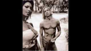 Iggy and the Stooges DDs