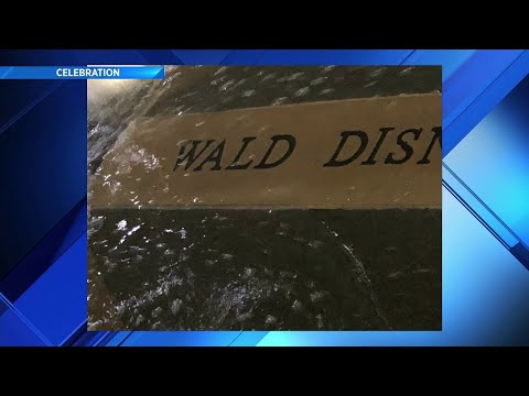 Fishhead - Florida Town's Upgraded Fountain Has Some Embarrassing Misspellings