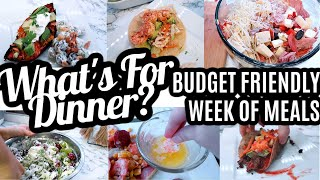 WHAT'S FOR DINNER | BUDGET FRIENDLY FAMILY MEAL IDEAS | A WEEK OF MEALS