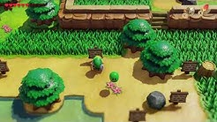 Zelda Link's Awakening Remake - Frog's Song of Soul Location