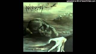 Nachtmystium - The Lepers Of Destitution