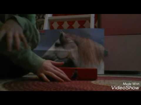 Pr sentation du jeux des sortil ge harry potter youtube - Sortilege ouverture de porte harry potter ...