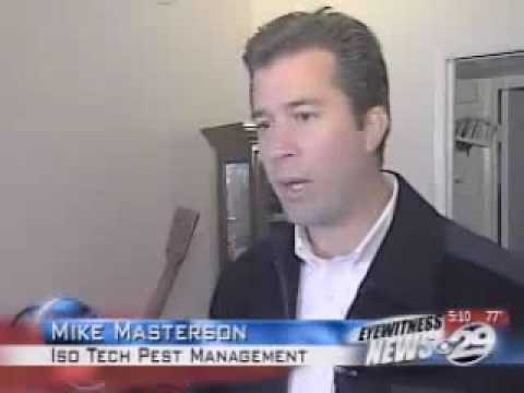 """isotech-pest-management-""""verminators""""-take-on-bed-bugs-in-bakersfield,-california"""