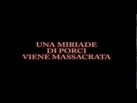 """TRAILER UFFICIALE DI """"verriXmas BEGINS"""" del 2010"""
