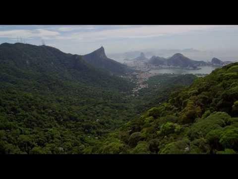 Amazonia - Trailer