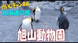 北海道の旅、旭山動物園編です。アンリアルエンジン4で作られた広大なオ...