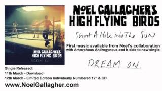 Noel Gallagher's High Flying Birds - Shoot A Hole Into The Sun