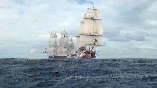 Черные Паруса | Black Sails | Капитан Вэйн