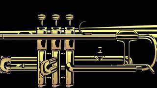 Sankyo Flute Company   Wikipedia audio article