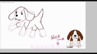 Springer Spaniel Webkinz speed drawing!