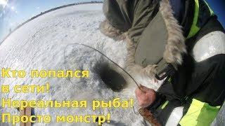 Кто попался в сети! Нереальная рыба! Просто монстр! Это рыбалка в Финляндии.