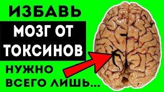 СОХРАНИТЬ РАССУДОК поможет чистка МОЗГА от ТОКСИНОВ Для здоровья сосудов мозга