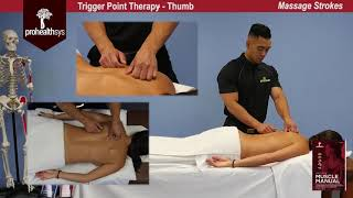 Awesome Massage   Trigger Point Therapy Vizniak