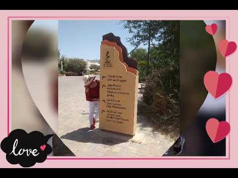 Dubai  Tour  at Dubai Museum ,Ras Al khaimah  Beach  Dubai  and Al Ain Zoo Dubai…