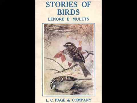 Stories of Birds (FULL Audiobook)