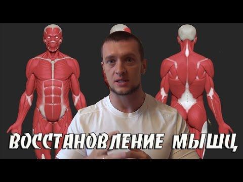 Как быстро восстановить мышцы - 5 способов быстро
